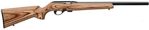 Remington 597 .22 LR